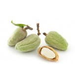 Extrait naturel d'Amandes amres