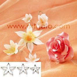 Rose - Calice de Rose - Grande Taille