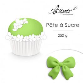 Pâte à Sucre 250 g - Vert Amande