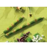 Tiges de Bambous
