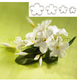 DECOUPOIRS FLEURS | Fleur 5 Pétales - Taille Moyenne, Jeu de 4 Tailles - en Fer Blanc