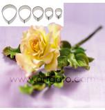 DECOUPOIRS FLEURS | Rose - Pétale de Rose, Jeu de 5 Tailles - en Fer Blanc