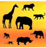 Découpoir Embosseur - Safari