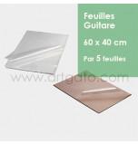 Feuilles Guitare | 60 x 40 cm