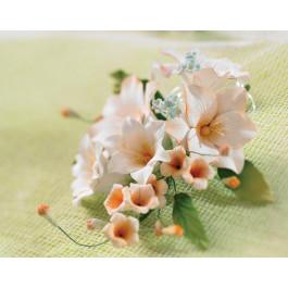 Assortiment de Fleurs Blanches