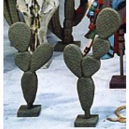 Cactus Raquette