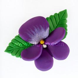Colorants Pâte Violet