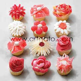 Mini Cupcakes Fleurs