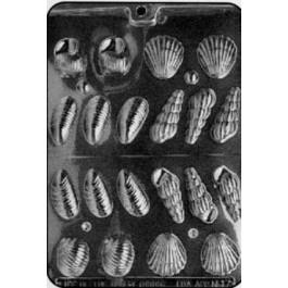 Moule à Chocolat, Assortiment Coquillages 3D