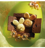 5 Entremets Moulds + 1 Chocolate Mould | EASTER EGG/BUNNY HUT - 17,5 x 14 x 6 cm Deep
