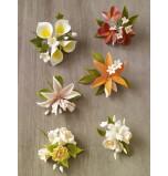 Petits Bouquets