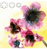SUGAR FLOWER CUTTERS   6 Petal Blossom - Medium Size, Set of 3 Sizes - Tinplate