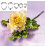 SUGAR FLOWER CUTTERS   Rose - Rose Petal, Set of 5 Sizes - Tinplate