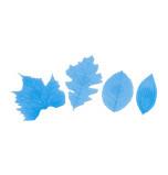 FLOWER & LEAF VEINER   Set N° 1, 4 Assorted Leaves