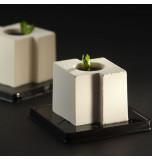 Pavoflex® Silicone Mould | 24 OFFSET CUBE (Tekno)
